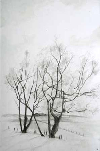 Tree Drawing, 2007 (mixed media on paper)
